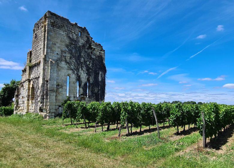 Château La Croix de Queynac