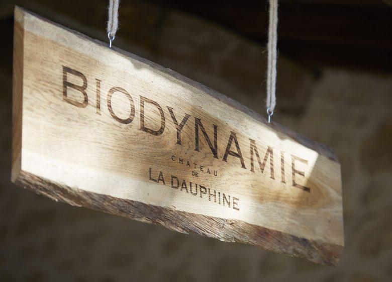 Château de la Dauphine – La Visite Nature