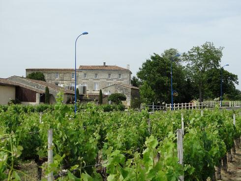 Domaine de Rouyet